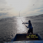 pulau weh fishing trip